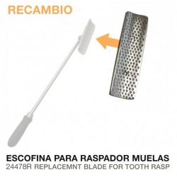RASPADOR MUELAS ESCOFINA...