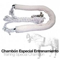CHAMBÓN ESPECIAL...